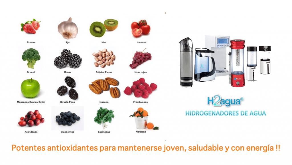 hidrogenadores agua - antioxidantes